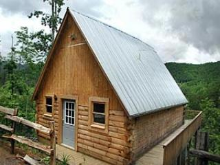 Tree House Cabin - Gorgeous Mountain Views - Bryson City vacation rentals