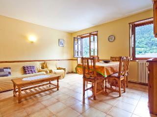 Salardu center 2 bedrooms - Catalonian Pyrenees vacation rentals