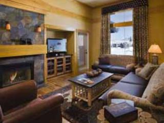 ski steamboat for christmas/new years - Steamboat Springs vacation rentals