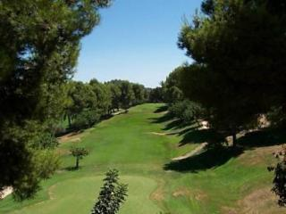 CARRASCAL GOLF J 2PAX - Costa Blanca vacation rentals