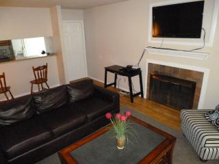 Beautiful 2 BD in Addison/Nort1AD5981807 - Addison vacation rentals