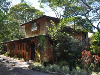 TREETOP HOUSE charming artistic in Monteverde - Monteverde Cloud Forest Reserve vacation rentals