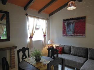 BEAUTIFUL CHALET INSIDE THE FOREST, RELAX AND COMFORT - San Cristobal de las Casas vacation rentals