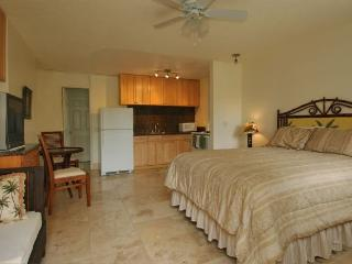Newly Renovated Studio Near Ocean and Attractions. - Honolulu vacation rentals