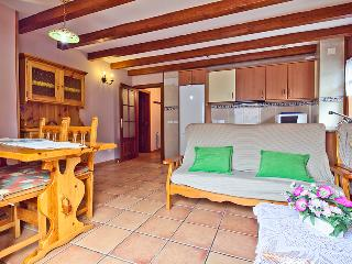 Salardu apartment 3 bedrooms 5 people - Catalonian Pyrenees vacation rentals