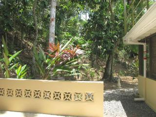 One-bedroom apartment, nearly in the rainforest - Panama vacation rentals