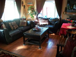 Clean&Cozy-Easy walk to town & Pool-Pets Ok &Wi-Fi - Glenwood Springs vacation rentals
