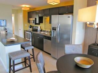 EIGHT WILTON FLATS-1b/1b, newly remodeled, upscale - Puerto Vallarta vacation rentals