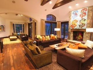 Spectacular contemporary ski in ski out vacation getaway in Snowmass Village - Snowmass Village vacation rentals
