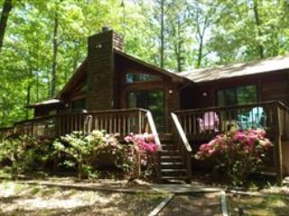 Pilots Landing 121565 - Lake Anna vacation rentals