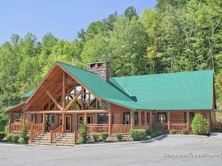 Nottingham Lodge - Pigeon Forge vacation rentals