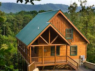 Raven's Nest at Sherwood Forest - Pigeon Forge vacation rentals
