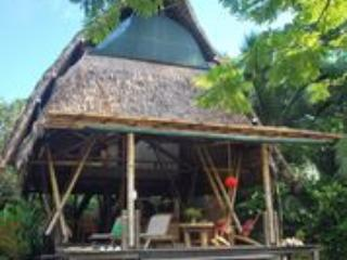 Open Air, Grass Roof, Bamboo House - Osa Beachfront Bamboo House - Puerto Jimenez - rentals