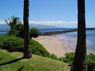 OCEANFRONT GETAWAY close to all ammenities - Maalaea vacation rentals