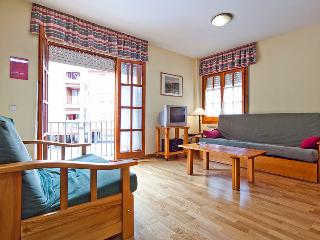 Viella center 2 bedrooms SOM - Catalonian Pyrenees vacation rentals