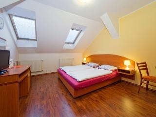 CR108bPrague - Cozy Room with breakfast in the City center of Prague - Prague vacation rentals