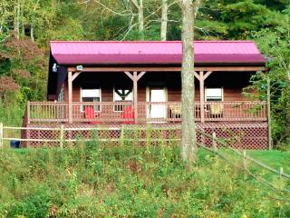 September Special $125 p/nt. Cabin on Creek & Trail- Guests Say: 'Spectacular!' - Galax vacation rentals