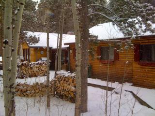 Charming Log Cabin for Peaceful Moutain Getaway! - Black Hawk vacation rentals