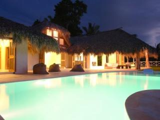 Luxury Villa With Oceanview, Infinity Pool, Park - Las Terrenas vacation rentals