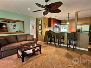Great Lahaina Town Location - Aina Nalu Resort 2 bedroom / 1 bath - Maui vacation rentals