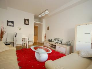 2 room flat 10min walking to Old town center - Kiev vacation rentals