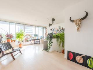 112 m2 Lake view Apartment near Center with 2 bikes - Amsterdam vacation rentals