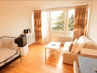 14 Holiday apartment Cologne Höhenberg - Cologne vacation rentals