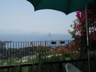 Beautiful bodrum - Gumusluk vacation rentals
