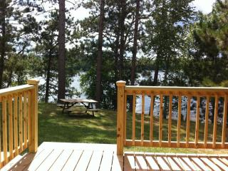 Hackensack Cabin on Beautiful Birch Lake for rent - Hackensack vacation rentals
