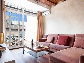 Cathedral Apartment with terrace next to the majestic Cathedral of Barcelona - Barcelona vacation rentals