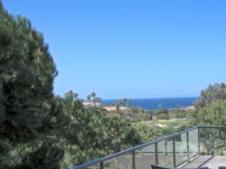 Monarch Beach Ocean View Home - Dana Point vacation rentals