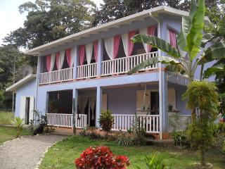 Casa Azul near the ocean - Limon vacation rentals