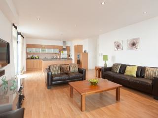Clydeside Hydro View - Edinburgh vacation rentals