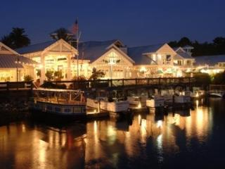 Discounted Rates at Disney`s Old Key West! - Lake Buena Vista vacation rentals
