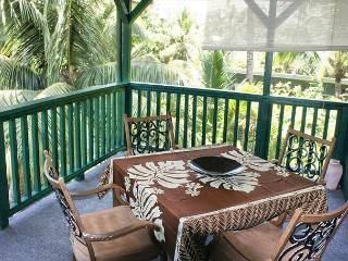 Take an Evening Stroll to the Ocean (Kahua Kapoho) - Puna District vacation rentals