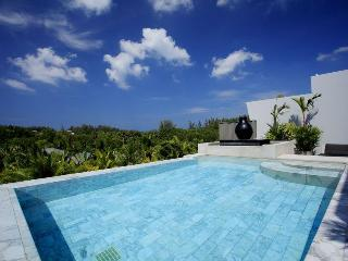 Luxury Penthouse Apartment with Private Pool - Thalang vacation rentals