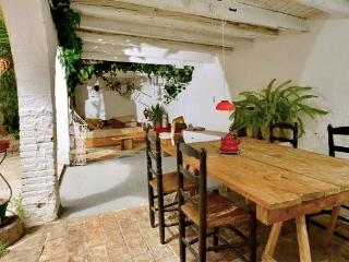 Near Barcelona, between mountain and sea in the middle of the Penedes Region - Province of Tarragona vacation rentals