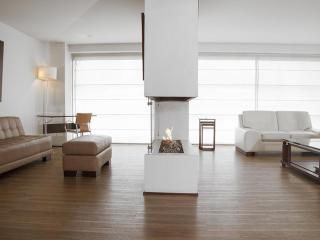Spacious 2 Bedroom Apartment in Parque 93 - Buenos Aires vacation rentals