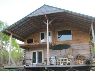 cabin for rent  near greenwater lake prov park - Porcupine Plain vacation rentals