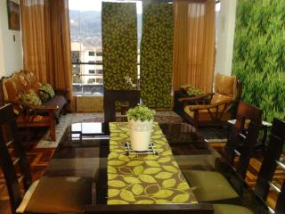 Apartment In Cusco - Cusco vacation rentals