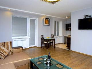 Comf One Bedroom in Kiev Maidan square - Kiev vacation rentals