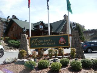 Westgate Smoky Mountain Resort and Water Park with gorgeous views ***SPECIAL RATE FOR SEPTEMBER 6TH TO SEPTEMBER 13TH*** - Gatlinburg vacation rentals