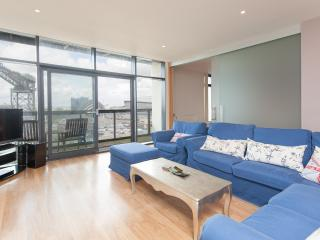 SECC View Apartment - Edinburgh vacation rentals