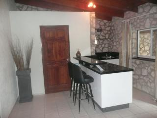 Apartment in clothing optional resort The Natural - Willibrordus vacation rentals