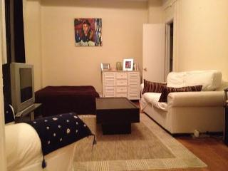 Holidays in New York! - Maspeth vacation rentals