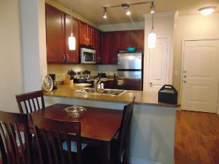 Great 1 BD in The Woodlands2WO108517207 - The Woodlands vacation rentals