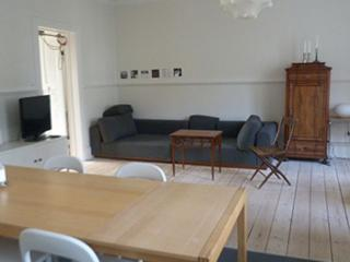 Large Copenhagen apartment at Enghave station - Copenhagen vacation rentals