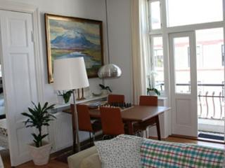 Bright and cozy Copenhagen apartment at Oesterbro - Copenhagen vacation rentals