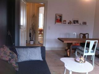 Romantic Copenhagen apartment near Central Station - Copenhagen vacation rentals