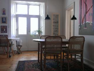 Beautiful and charming old Copenhagen apartment - Copenhagen vacation rentals